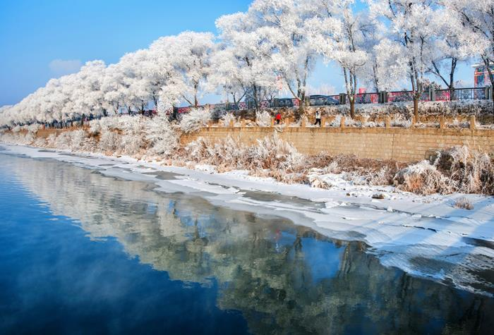 【陽光·東北游】【冰雪霧凇】東北黃金環線6天