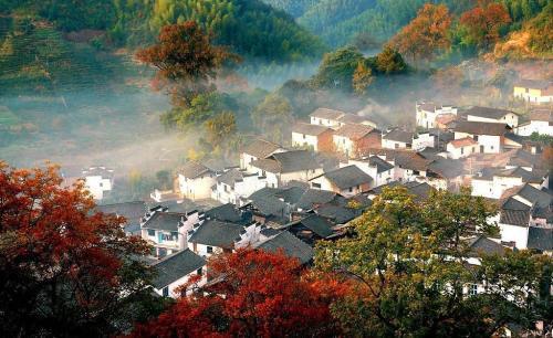 青島直飛黃山:黃山、千島湖、婺源、徽商大宅院、雙古街、雙飛4日游