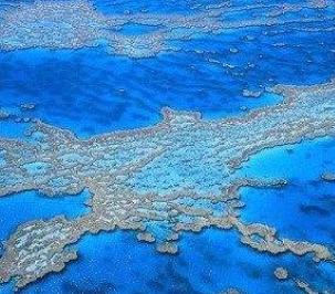 臘月二十九——青島到澳大利亞+新西蘭北島+凱恩斯+墨爾本12日游(綠島大堡礁+精致小團)