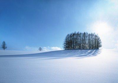 【12月雪之秘境】——青島出發去日本環游北海道全景七日(富良野滑雪場+白色戀人城堡+魔法森林精靈小屋)