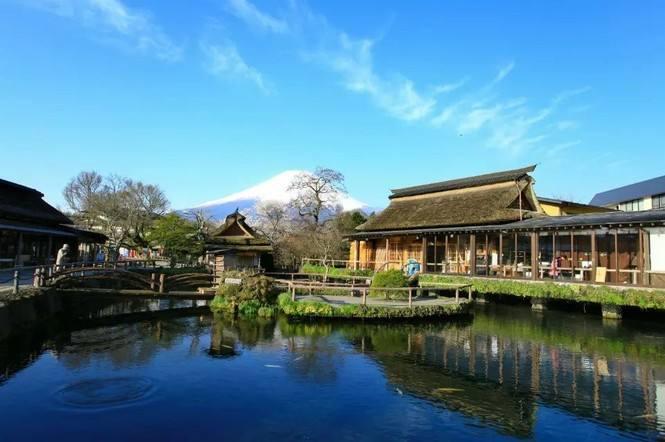 【鼎級和風之旅】——春節青島去最美日本本州6日游(全程國五酒店、全日空航空)