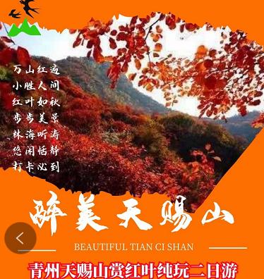 秋季賞秋推薦——青州天賜山賞紅葉+古街+博物館+井塘古村二日游