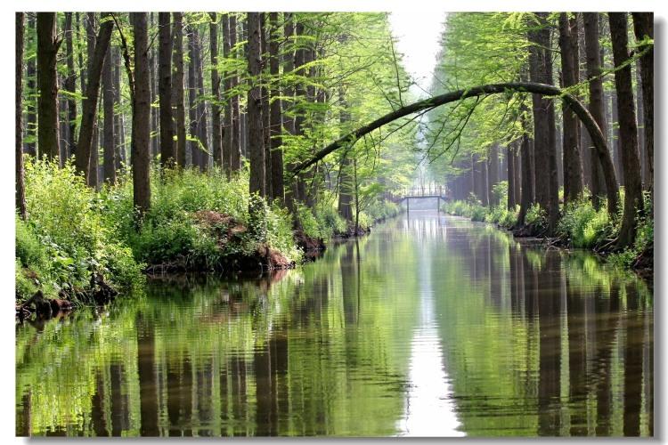 【五一亲子大巴】常州恐龙园、迪诺水镇、淹城野生动物园、李中水上森林公园大巴三日游